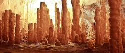 (Crisana) La Grotte des Ours