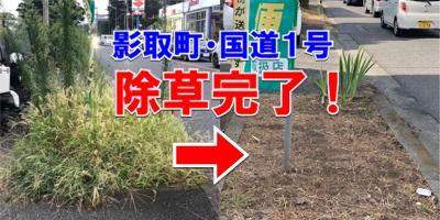 影取町の国道1号線歩道部の除草完了!