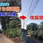 20210324_001_400.jpg