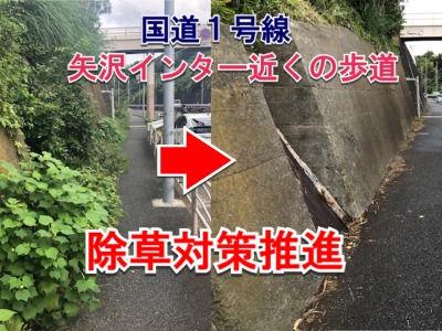 国道1号線矢沢インター近くの歩道の除草対策推進