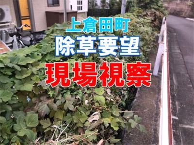 上倉田町の市道脇の除草要望先を視察