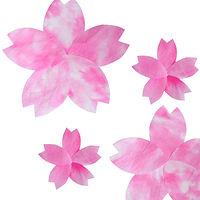 和紙を桜色に染色