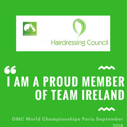PRINT I am a proud member of Team Ireland (1)