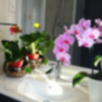 Institut de massage avec douche à Mulhouse, Wittenheim, Kingersheim, Illzach, Pfastatt, Dornach, Didenheim, Sierentz, Hasheim, Chalampé, Ottmarsheim, Haut Rhin, Alsace,