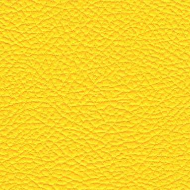 Yellow AmpStyle
