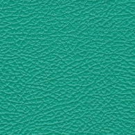 Teal AmpStyle