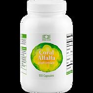 """AlfaAlfa - Programma """"Purificazione del fegato"""""""