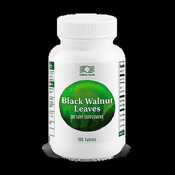 Листья Черного Ореха - Black Walnut Leaves