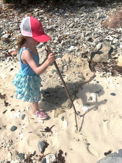 Hadley Explores Hart Bay Beach