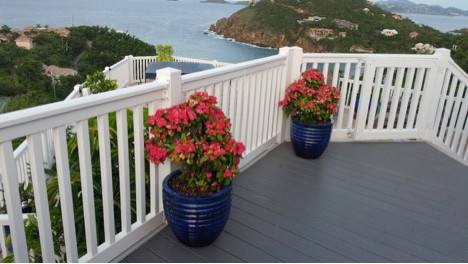 Potted Plants Andante by the Sea