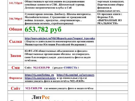 Отчет МД «ЕЖИ» за 2019 г.