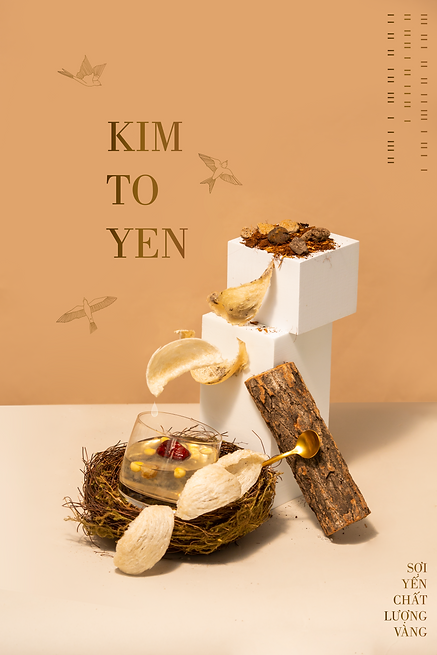 concept_art_kimtoyen.png
