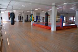 Мир бокса