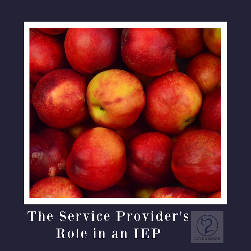 Speaker Series   The Service Provider's Role in an IEP Meeting