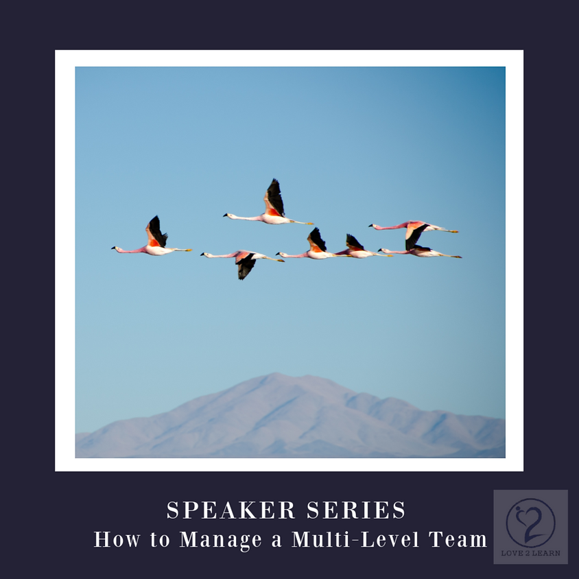 Speaker Series   How to Manage a Multi-Level Team without Wasting Time & Energy