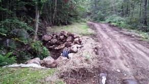 Travaux de mise aux normes de chemins forestiers