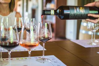 Annabella Pascale di Artimino nel Consiglio del Movimento Turismo del vino Toscana