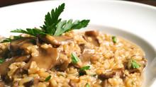 Risotto integrale ai funghi con pecorino fresco al tartufo