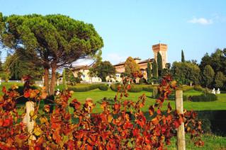 In Collio per ammirare i colori del foliage e per gustare i sapori dell'autunno