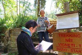 Il turismo del vino riparte con la 'Terapia del paesaggio': trekking nelle vigne e degustazi