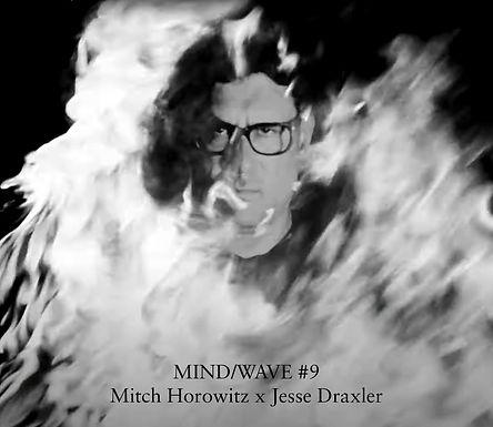 MINDWAVE---Mitch-Horowitz_HR-text.jpg