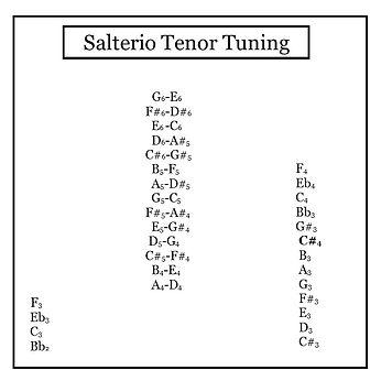 SalterioTenorTuning.jpg