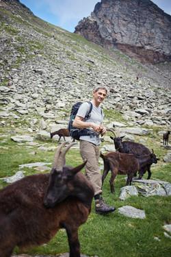 Georg mit Ziegen im Adula