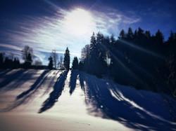 Wintersiten