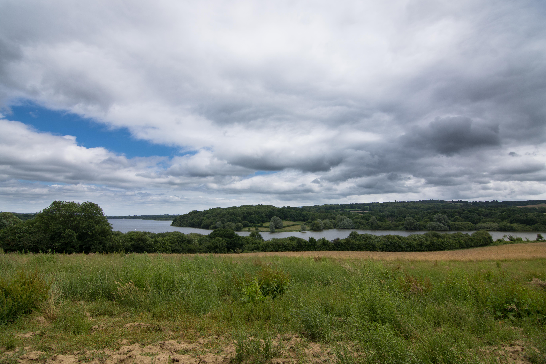 DAVID_JEFFERY Weir Wood Reservoir and Ashdown Forest 16.06.18 0001