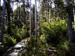 trekking-fotografico1