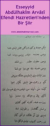 Abdülhakim Arvasi Efendi Hazretleri'nden bir şiir