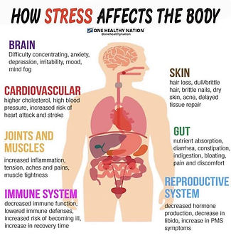 how stress affects your body.jpg