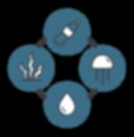 ocean-health_ecosystem-1x.png