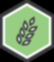 newday-sustainable-agriculture-portfolio