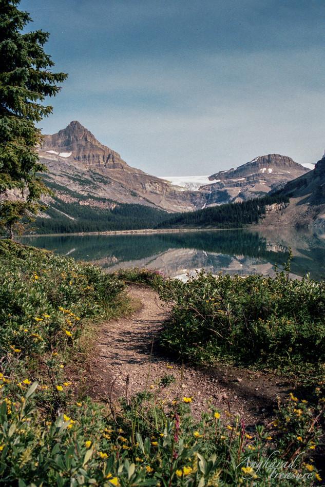 Mountain in Jasper