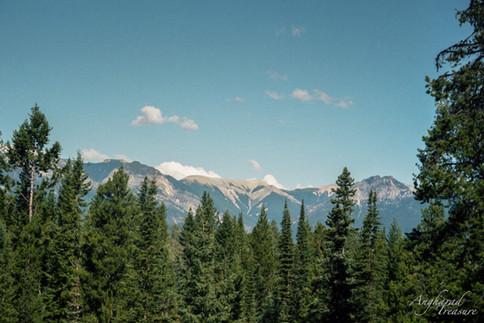 Campsite Views