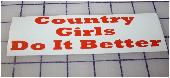 Counrty Girls Do It Better red sticker d