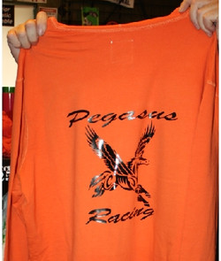 Pegasus Racing Hyrdo Boat team custom ts