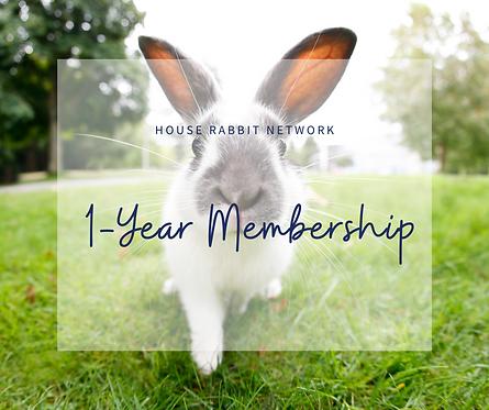 Yearly Membership - Flemish Giant