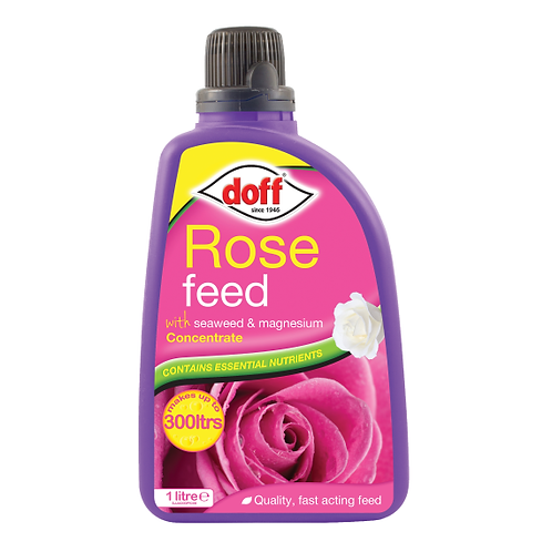 Doff Rose Feed