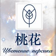 Цветок персика - анализ