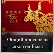 Общий прогноз на 2021 год Быка
