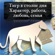 Тигр в Ба Цзы