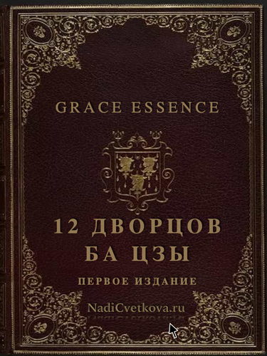 12 дворцов книга