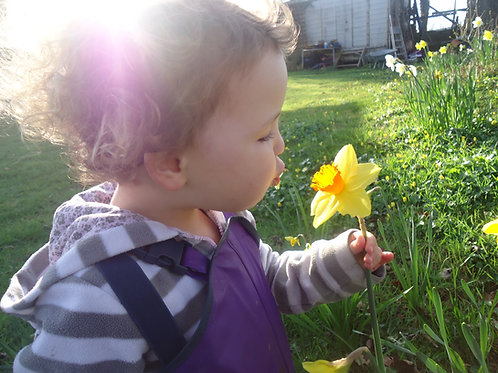 Spring Play and Learning Guide