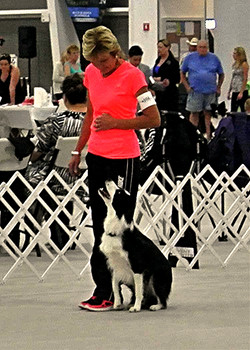 Obedience_Challenge_Judy_Ramsey_&_Switch_edited