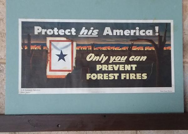 Blue Star Forrest Service 1945 poster.jp