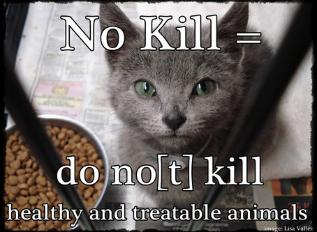 No Kill Opposition – Please Know Your Facts Before You Offer Your Opinion