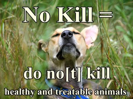 """Why We Use the Phrase """"No Kill"""""""