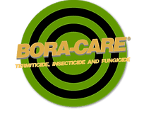 boracare-300x236-300x236.png